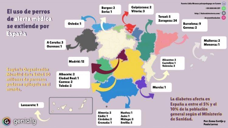 Este mapa de España representa la cantidad de perros de alerta médica (Jack Russell) que la Fundación Canem ha enviado a las distintas Comunidades Autónomas de España.