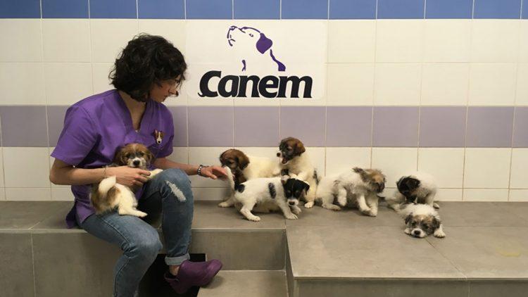 CANEM lleva en funcionamiento desde 2013. Fotografía cedida por Lidia Nicuesa